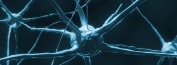 Correlati Neurali della Coscienza: Neurofisiologia ed applicazioni cliniche - 28 Maggio 2021
