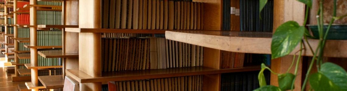 Veduta dell'interno della biblioteca del DBA