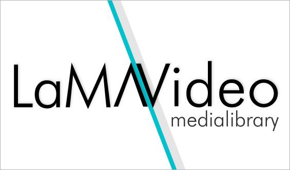 Logo LaMAVideo