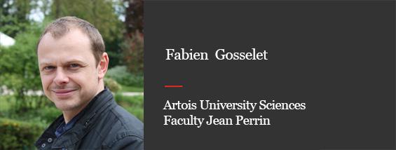 Prof. Fabien Gosselet