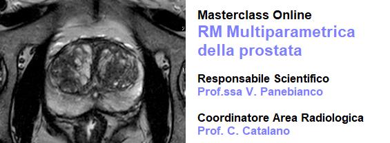 Examinarea rm multiparametrica prostata