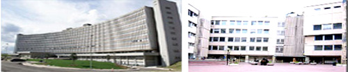 Home page faculty of medicine and psychology