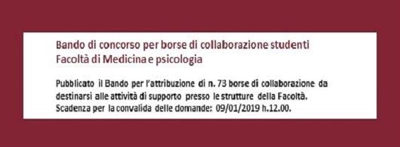 Bando borse di collaborazione studenti A.A. 2018-2019