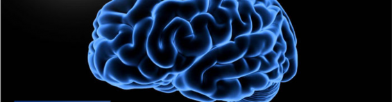 Neuropsychoanalysis: the brain mechanism (and biological function) of dreaming