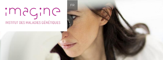 PhD International Program at Imagine Institute- Paris- France