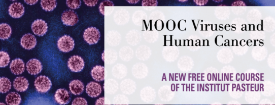 Viruses and Human Cancers MOOC of the Institut Pasteur