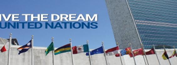 MUN, Model United Nations, sono simulazioni diplomatiche multilaterali