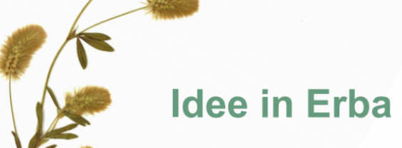 Idee in Erba: Concorso di idee per tutti gli studenti Sapienza