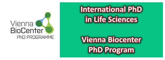 Vienna Biocenter PhD Program - Deadline 15 November