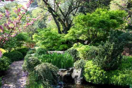 Il giardino giapponese sapienza università di roma
