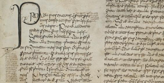 St. Gallen, Stiftsbibliothek, 904, da e-codices